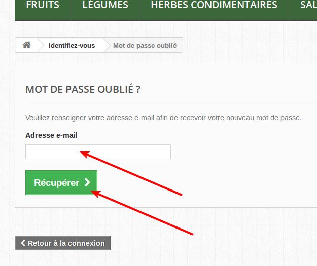 Complétez avec votre adresse électronique et cliquez sur le bouton Récupérer : un courriel avec un lien à cliquer vous sera automatiquement envoyé