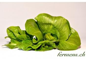 Salade Grumolo