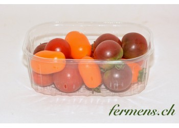 Tomates cerises mélange