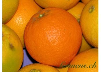 Orange blonde