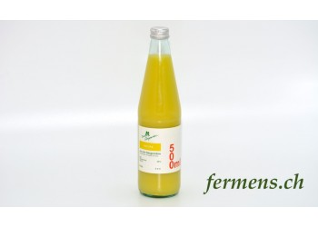 Jus de Gingembre (nature)  500ml