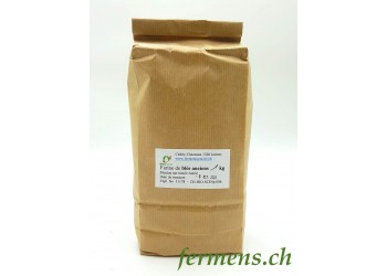 Farine de blés anciens (1kg)