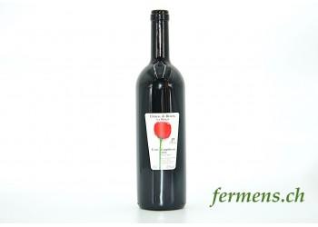 Vin rouge Cuvée compliments Château de Denens (75cl)