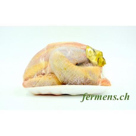 Poule à bouillir BIO (env. 1kg)